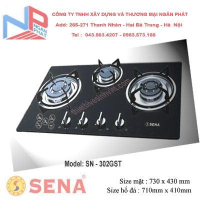 Bếp gas âm Sena SN-302GST