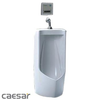 tieu-nam-cam-ung-caesar-UA0285-A637