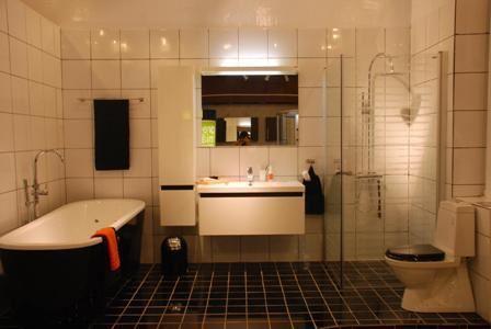 Sắp xếp các thiết bị vệ sinh theo phong cách 2