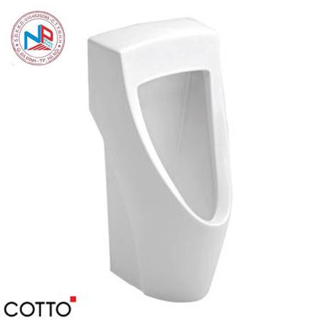 Tiểu nam Cotto C31217