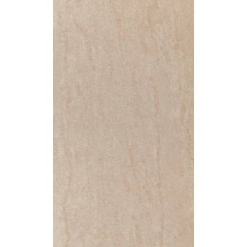 Gạch Ceramic ốp tường 30×60 – WG39007