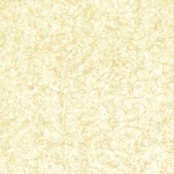 Gạch lát 50×50 – GN503