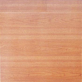 Gạch lát 50×50 – G505