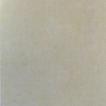 Gạch Granite lát sàn 60×60 MSV6007