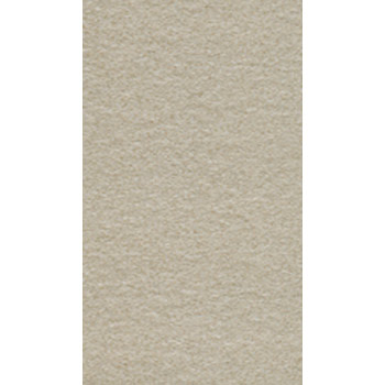 Gạch Taicera 30x60 G63522