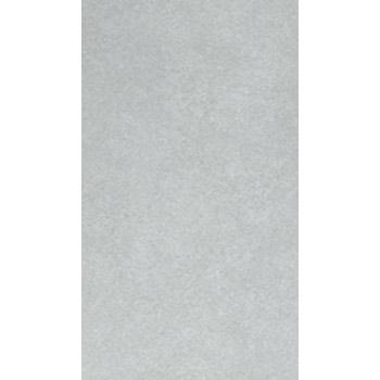 Gạch Taicera 30x60 - G63991S