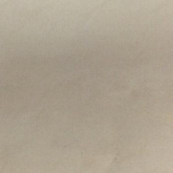 Gạch Taicera 60×60 – P67532N