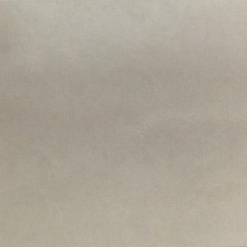 Gạch Taicera 60×60 – P67772N