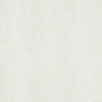 Gạch Taicera 80×80 – P87762N