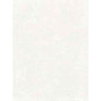 Gạch ốp Viglacera Ceramic 30×45 – B4501