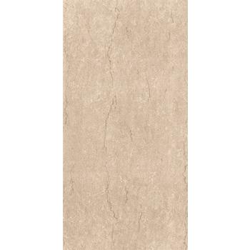 Gạch ốp Viglacera Ceramic 30x60 - F3602