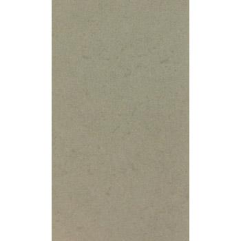 Gạch VietCeramics 30x60 - 36GB276