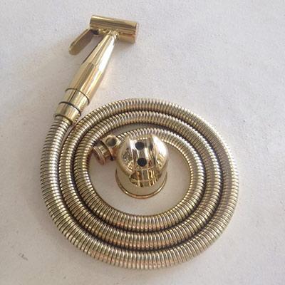 Vòi xịt mạ vàng CleanMax VX68N