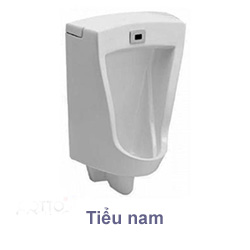 Tieu-nam-Cotto
