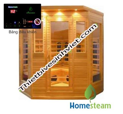 HomeSteam HS-501A
