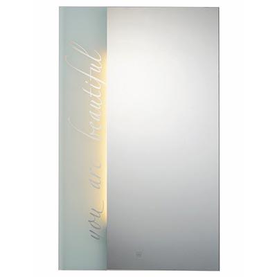 Gương đèn LED Đình Quốc DQ 67017