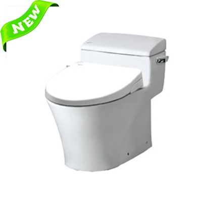 Bồn cầu Inax AC-1017R+CW-S15VN (Nắp shower toilet)