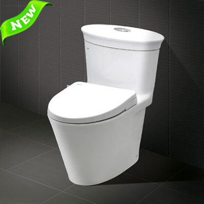 Bồn cầu INAX AC-3003+CW-S15VN (Nắp shower toilet)
