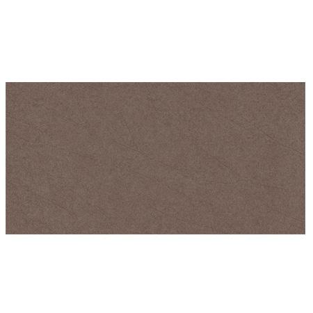 Gạch ốp Viglacera Ceramic 30×60 – UM3604