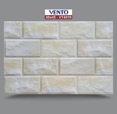Gạch ốp VENTO 30×45 VT4519