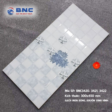Gạch ốp BNC 30×45 BNC34020.21.22