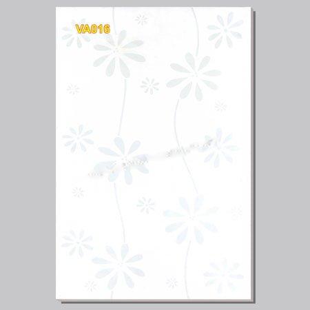Gạch ốp Hacera 30×45 VA016