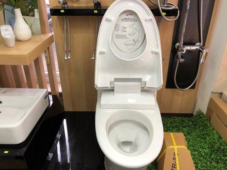 Những phụ kiện không thể thiếu khi lắp đặt bồn cầu toilet