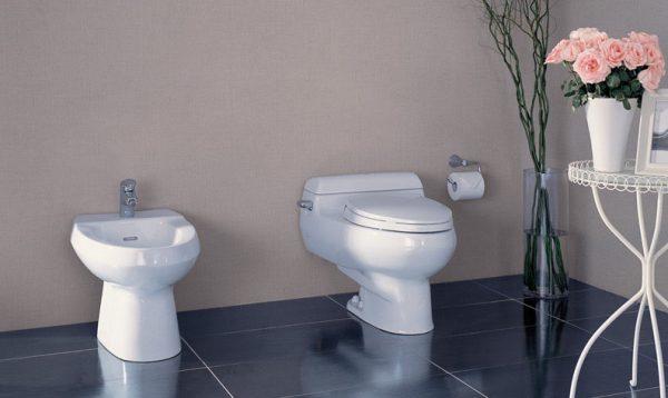 Nên ngồi nhẹ nhàng lên bồn tiểu để vệ sinh