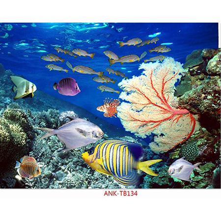 Gạch tranh biển Anh Khang ANK-TB134