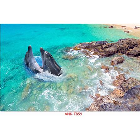 Gạch tranh biển Anh Khang ANK-TB59