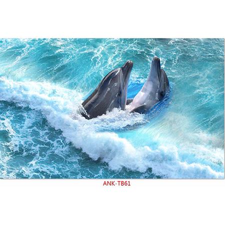 Gạch tranh biển Anh Khang ANK-TB61