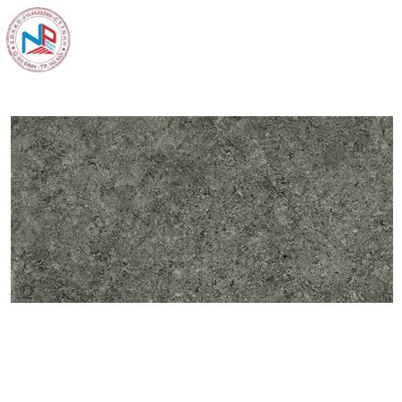 Gạch Vietceramics 30×60 3060SM8H9D vân đá