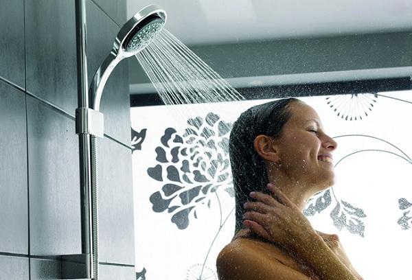 Nên mua sen cây tắm ở đâu?