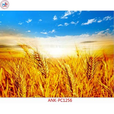 Gạch tranh phong cảnh Anh Khang ANK-PC1256