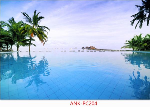Gạch tranh phong cảnh Anh Khang ANK-PC204