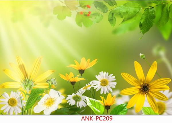 Gạch tranh phong cảnh Anh Khang ANK-PC209