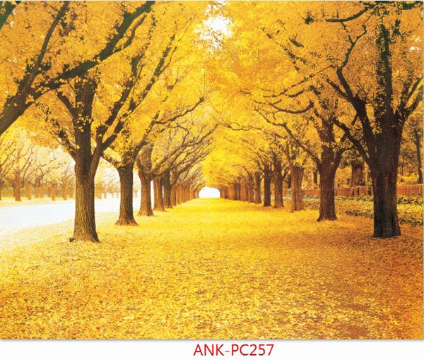 Gạch tranh phong cảnh Anh Khang ANK-PC257
