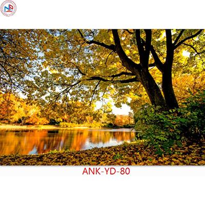 Gạch tranh phong cảnh Anh Khang ANK-YD-80
