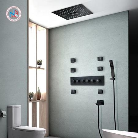 Sen cây tắm âm tường HL 001