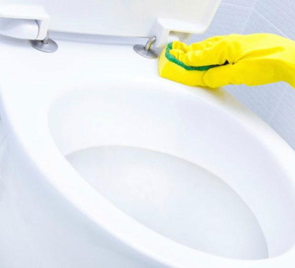 Cách chọn bồn cầu vệ sinh