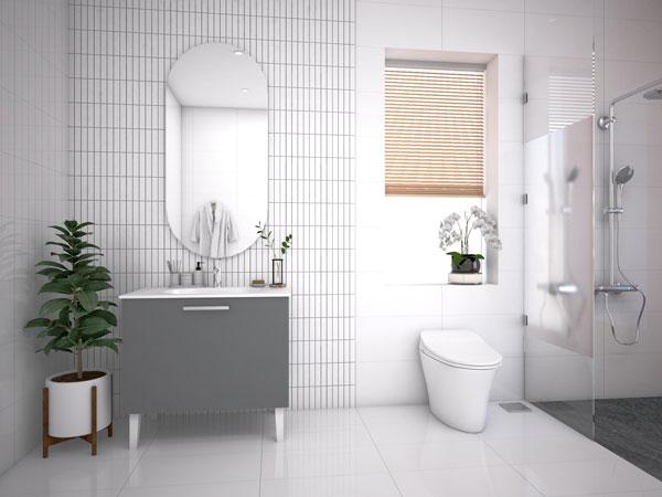 Bồn cầu nhà vệ sinh 1