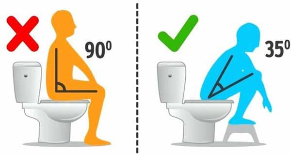 Cách ngồi bồn cầu đúng cách theo chuẩn khoa học 1