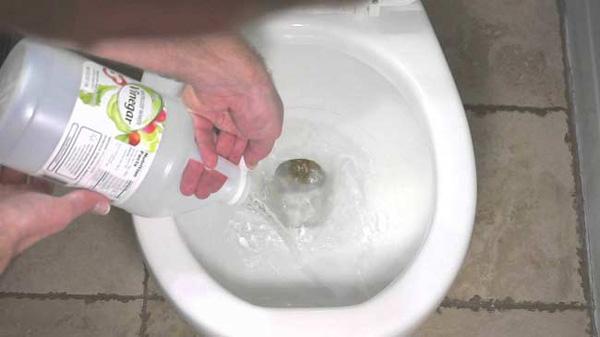 Cách tẩy rửa bồn cầu bằng giấm trắng 1