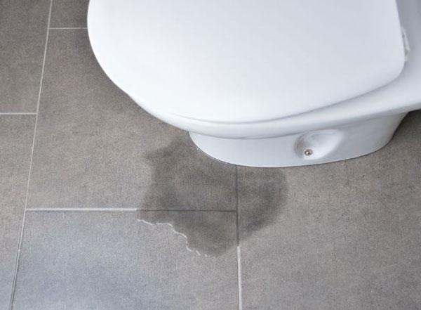 Nguyên nhân và cách sửa bồn cầu bị rỉ nước tại nhà
